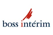 web Boss interim logo
