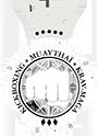 logo AIAMM 125